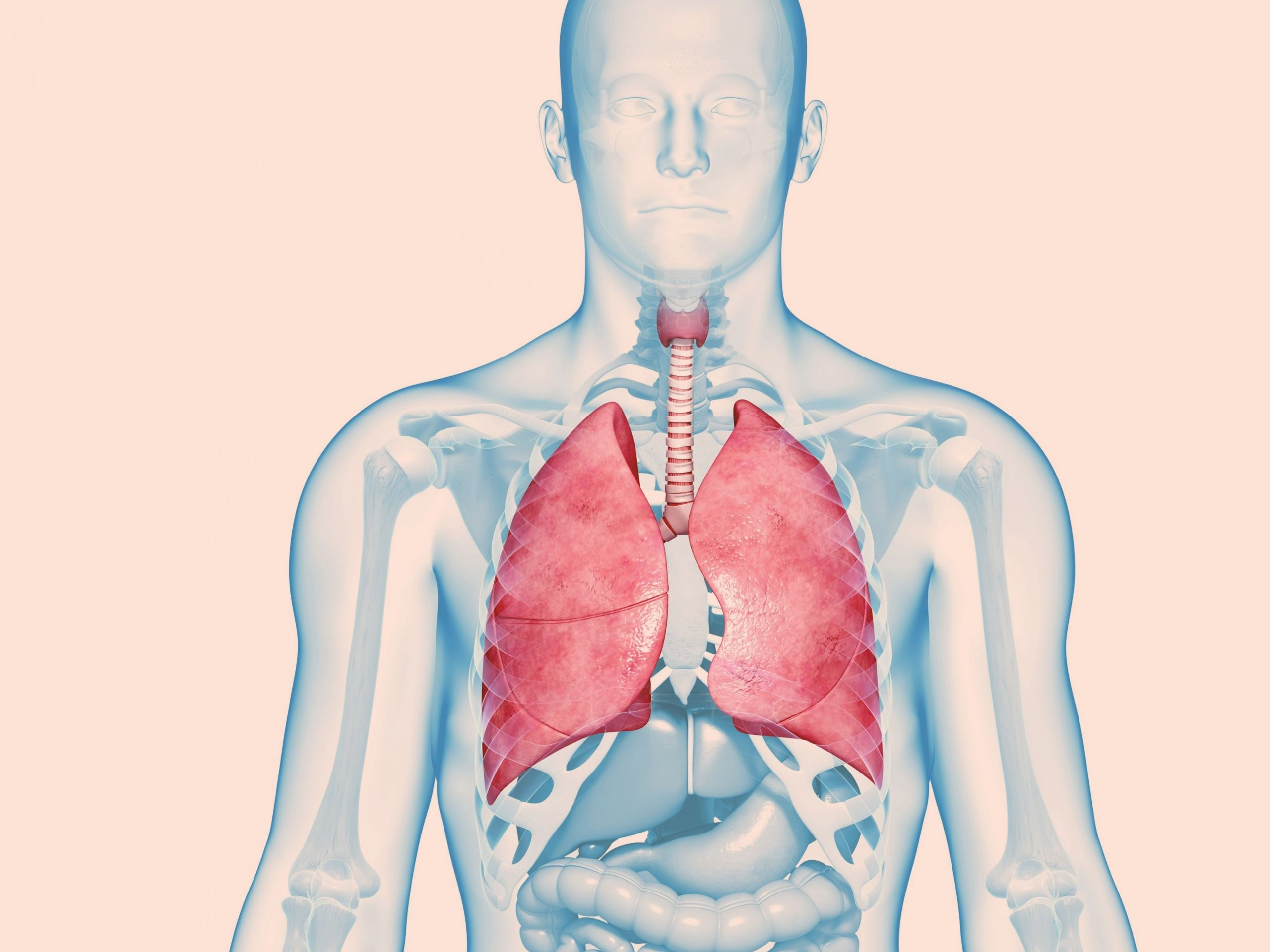 How can you drain mucus from the lungs?- 3 exercises you can do at home