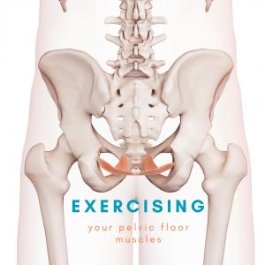 pelvic floor exercises blog